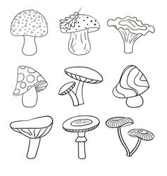 Set of beautiful cute cartoon contoured mushrooms vector