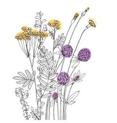 Sketch wildflowers vector