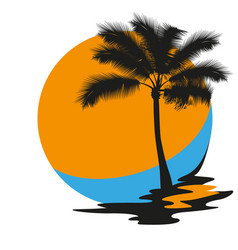 silhouette of a palm tree vector image