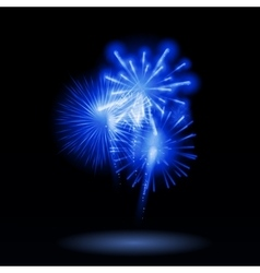 Fireworks Salute on a Dark vector image