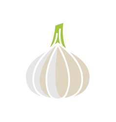 garlic icon template isolated vector image