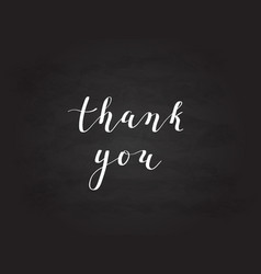 Hand-drawn thank you digital calligraphy vector