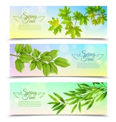 Horizontal Banners Set With Green Branches vector image