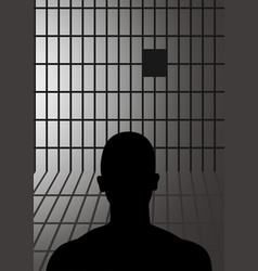 man in jail vector image