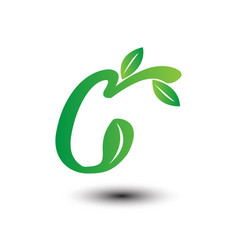 c green leaves letter ecology logo vector image vector image
