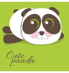 Cute young baby panda bear vector image