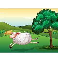A sheep vector image