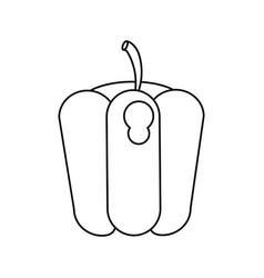 pepper vegetable diet nutrition outline vector image vector image