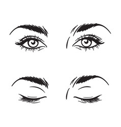 Beautiful female eyes set - open and closed vector