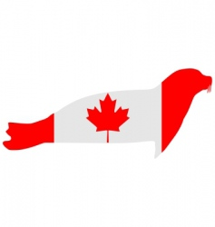 Canadian seal vector image