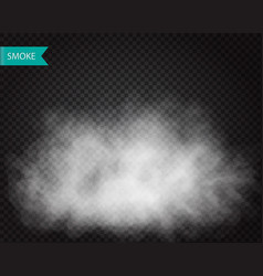 Fog or smoke cloudiness transparent effect vector