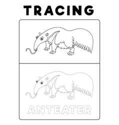 Funny anteater animal tracing book with example vector