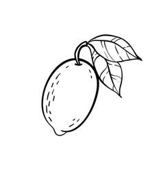 monochrome lemon logo design for holiday vector image