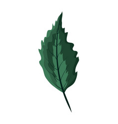 nice exotic leaf rustic plant vector image