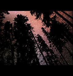 Night starry landscape background universe vector