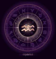 Zodiac sign and constellation aquarius vector
