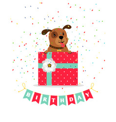 birthday greeting card with dog vector image