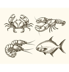 seafood in hand drawn style vector image vector image