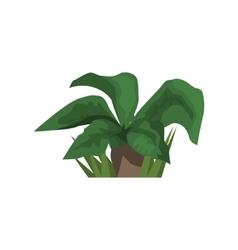 Big Leaf Tropical Plant Jungle Landscape Element vector image vector image