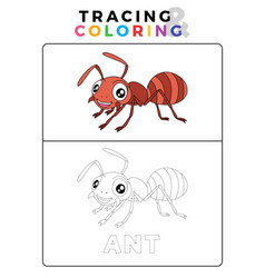 Funny ant insect animal tracing and coloring book vector