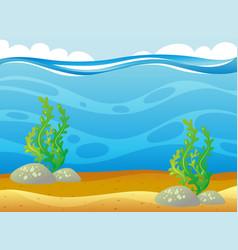 Ocean scene with seaweed underwater vector