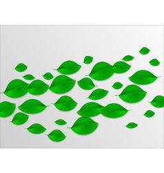 Realistic green leaves abstract background Ecology vector