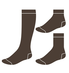 Set of socks vector image