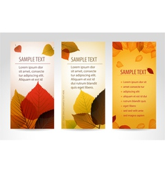 fresh natural banners vector image