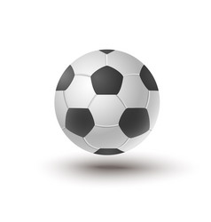 Ball for soccer vector