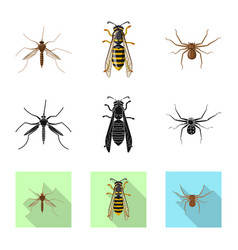 Design of insect and fly icon collection vector