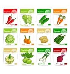 Fresh vegetable label banner and tag set design vector