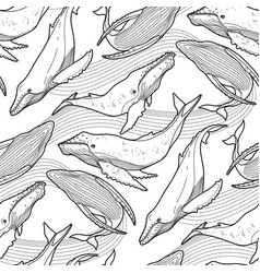Graphic humpback whale pattern vector