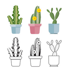 Hand drawn cartoon flat cactus set vector