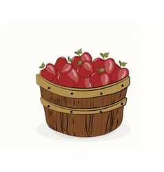 Red apples in a wooden basket vector