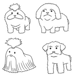 set of dog shih tzu vector image