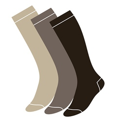 Set of long socks vector image