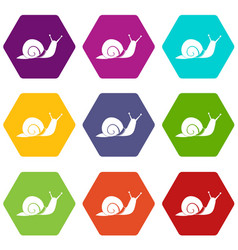 snail icon set color hexahedron vector image