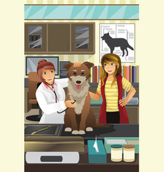 veterinarian examining a cute dog vector image