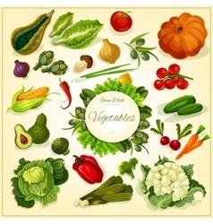 Fresh vegetable poster for food design vector image vector image