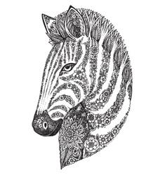 Hand drawn graphic ornate floral zebra head vector image