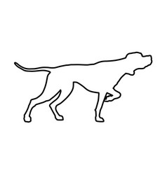english pointer in line style vector image