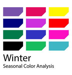 Seasonal color analysis palette for winter type vector