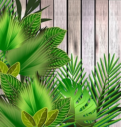 Tropical green leaves over wood vector image