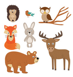 set of isolated forest animals vector image vector image