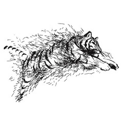 Hand sketch leaping tiger vector image vector image