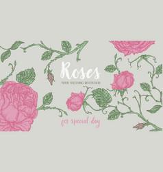 blue rose frame vector image
