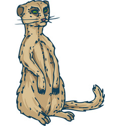 Meerkat or suricate vector