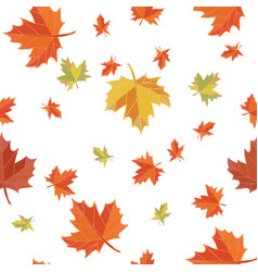 seamless pattern of maple leaves background vector image