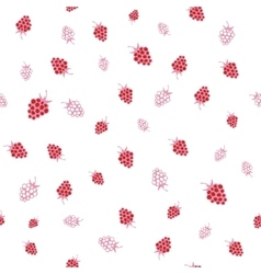 Seamless pattern of raspberries vector image