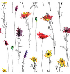 seamless pattern with herbs and flowers vector image